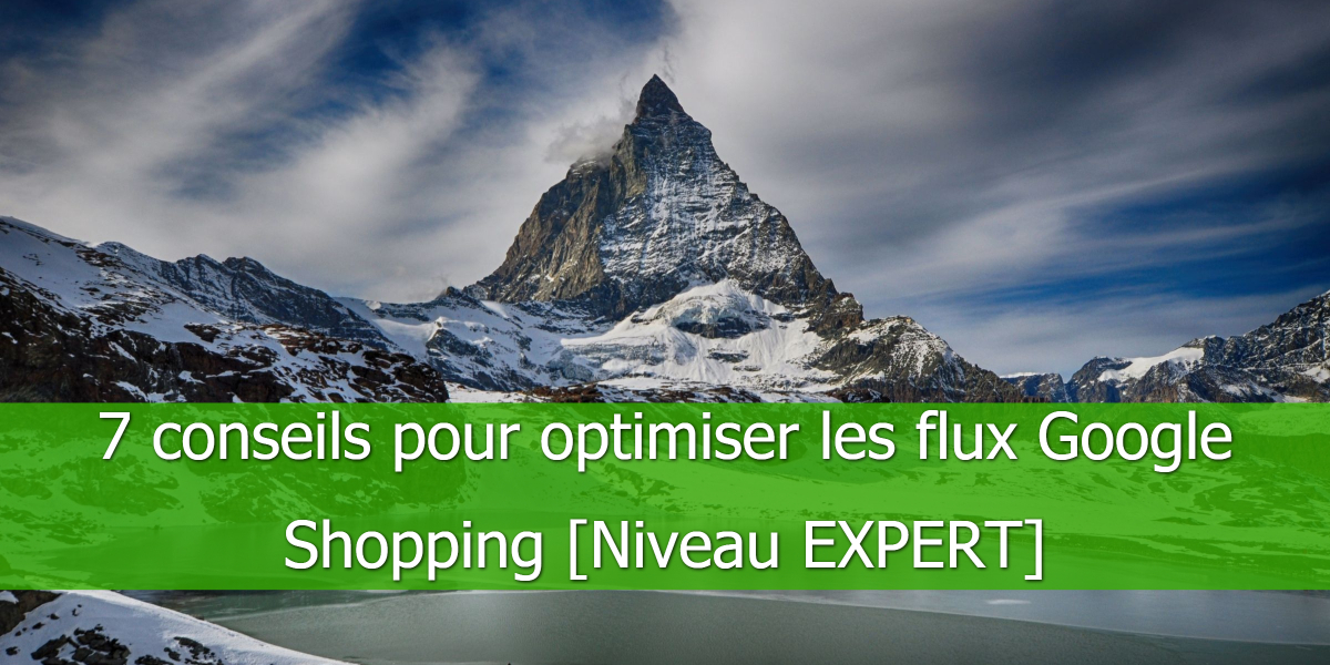 EXPERT-optimiser-flux-Google-Shopping